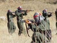 PKK Şemdinli'de yol kesti