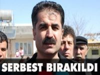 CHP'li vekil serbest bırakıldı