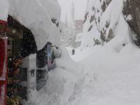 Kara gömülen Hakkari'de kar manzaraları