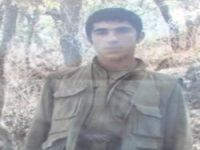 PKK'li Leşker toprağa verildi
