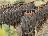 PKK'nin Hakkari'de çekilmesi 5 ay sürebilir
