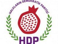 HDP Erciş İlçe Eş Başkanı tutuklandı