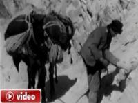 1974 Hakkari video