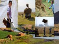 TRT haberden Hakkari belgeseli