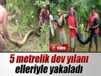 5 metrelik dev anakonda!