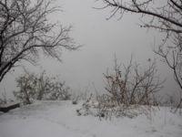 Hakkari il genelinde kar yağışı başladı