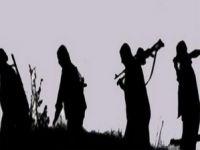 PKK Şemdinli'de kimlik kontrolü yaptı