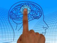 İnsan beyni çok dolarsa ne olur?