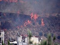 Bodrum'da orman yangını; 100 hektar kül oldu