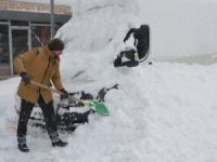 Yüksekova'da kar esareti!