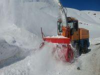 Hakkari'de karla mücadele çalışmaları sürüyor
