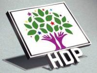 HDP Hakkari il örgütü 1 Kasım'da kongreye gidecek!