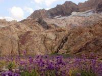 Cilo-Sat Dağlarında iki yeni buzul gölü keşfedildi!