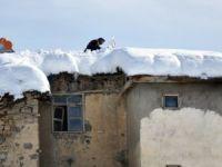 Kar 116 köy yolunu kapattı!