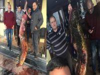 Göl'de 2 metre 10 santim boyunda yayın balığı çıktı