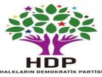Hakkari'de HDP'ye kaç kişi başvurdu?