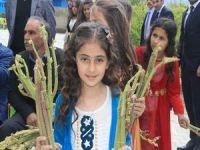 "Hakkari'de 2. Uçkun festivali"" düzenlendi"