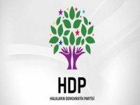 HDP Hakkari il örgütünden karşılamaya davet