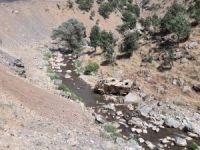 Trafik kazası: 1 ölü, 12 yaralı