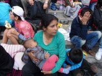 10 binden fazla mülteci çocuk kayboldu