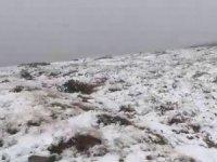 Rize'nin yüksek kesimlerinde kar yağışı yaşandı.