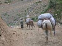 Yük hayvanı üzerinde bin 199 tarım ilacı ele geçirildi