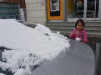 Bitlis'te kar yağışı etkili olmaya başladı