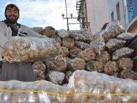 Yüksekova'da günde 10 ton patates satılıyor