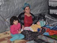 Doğuştan engelli çocuğun ailesi yardım bekliyor