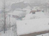 Hakkari'de karla mücadele sürüyor