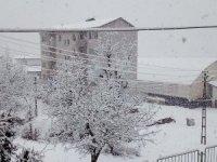 Çukurca kar yağışı etkisi altına girdi