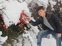 Hakkari'de kar manzarası 2018