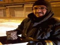 Boruya sıkışan yavru kediyi itfaiye kurtardı