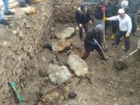Durankaya'da ahır çöktü 6 hayvan telef oldu