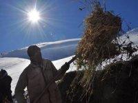Çiftçilerin kış çilesi