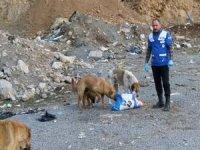 Sokak hayvanlarını kendi elleriyle beslediler