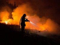 Şili orman yangınlarıyla savaşıyor