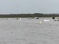 Kargo uçağı düştü: 3 ölü