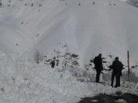Şırnak-Hakkari karayoluna çığ düştü