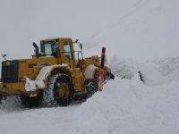 Van kar yağışı etkisi altında 15 köy yolu kapandı