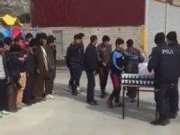 75 kaçak göçmen yakalandı