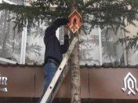 Çukurca'da kuşlar için 100 adet yuva yerleştirildi