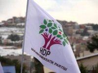 HDP'li meclis üyesi gözaltına alındı