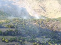 50 dönümlük ağaçlık alanda yangın çıktı