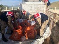 Kaçak balık avlayanlara 172 bin 568 TL para cezası
