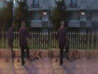 Köpeğe tekme atan şahıs kamerada