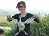 Bahri kuşu doğaya bırakıldı
