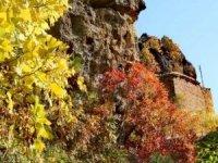 Çukurca'da sonbahar cümbüşü