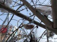 Öğrenciler kuşlar için yemlik yaptı