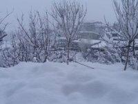 Hakkari'de 82 köy,77 mezra yolu ulaşıma kapandı